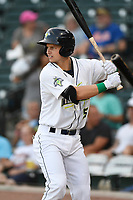 Designated hitter Matt Winaker (5) of the Columbia Fireflies bats during a game against the Charleston RiverDogs on Tuesday, August 28, 2018, at Spirit Communications Park in Columbia, South Carolina. (Tom Priddy/Four Seam Images)