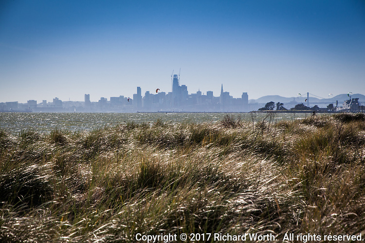 Look sharp and you'll see a half dozen parasails in the air, floating against the San Francisco skyline as viewed from the grassy sandy shores of Alameda's Crown Beach  across San Francisco Bay.