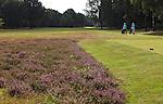 GEIJSTEREN - Hole 8 van Golf- en Countryclub Geijsteren. FOTO KOEN SUYK