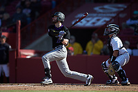 Ben Dellacono (16) of the Holy Cross Crusaders follows through on his swing against the South Carolina Gamecocks at Founders Park on February 15, 2020 in Columbia, South Carolina. The Gamecocks defeated the Crusaders 9-4.  (Brian Westerholt/Four Seam Images)