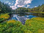 Wigierski Park Narodowy - jezioro Suchar IV, Polska<br /> Wigry National Park - Suchar IV lake, Poland