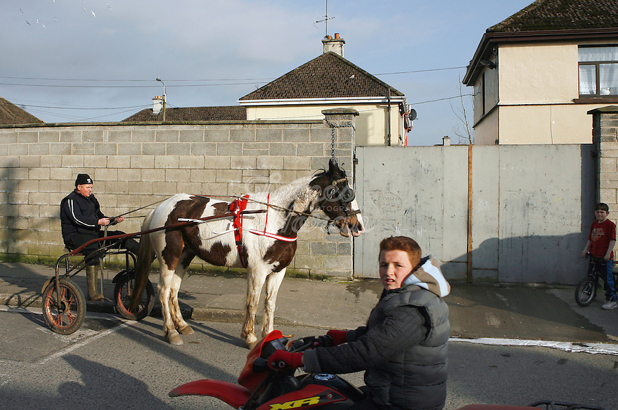 Ger Hogan is pictured with  Freckles his horse in St Marys Park, Limerick.<br /> Picture James Horan.