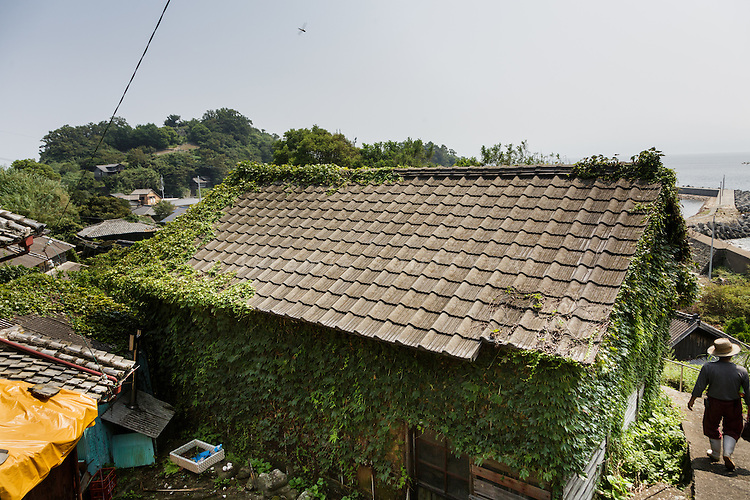 Aoshima, Ehime prefecture, September 4 2015 - A local resident passing by an abandonned house in Aoshima island. Due to Japan demographic problem and rural exodus, the population decreased from 800 residents in the 1960ies to 15 in 2015.<br /> Aoshima (Ao island) is one of the several &laquo; cat islands &raquo; in Japan. Due to the decreasing of its poluation, the island now host about 6 times more cats than residents.