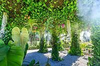 France, Loir-et-Cher (41), Cheverny, château de Cheverny, le jardin bouquetier, ombrière couverte de lierre et orchidées (Vanda...), Tillandsia usneoides