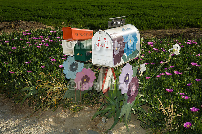 Mail and paper boxes with painted wooden flowers surrounded by blooming flowers, spring