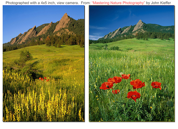 "Chautauqua Park and wildflowers. Photos from: ""Mastering Nature Photogrpahy"" by John Kieffer."