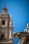 Gargoyle from the House of Shells, with the Clergy church on the background, Salamanca, Spain