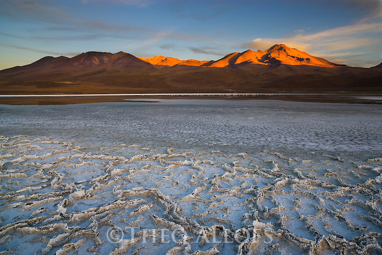 Bolivia, Altiplano, salt patterns on shore of Laguna Canapa at sunrise