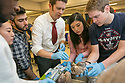 Pediatric neurosurgeon Eric Thompson, MD, (center with tie) teaches Duke first-year medical students about the anatomy of the cerebral cortex and the blood vessels that supply blood to the brain during a wet-lab experience with human brain specimens in the Trent Semans Center.