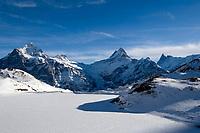 CHE, Schweiz, Kanton Bern, Berner Oberland, Grindelwald: der zugefrorene Bachalpsee (2.265 m) mit den Gipfeln Wetterhorn (3.701 m), Schreckhorn (4.078 m) und Finsteraarhorn (4.274 m), dem hoechsten Berg der Berner Alpen | CHE, Switzerland, Bern Canton, Bernese Oberland, Grindelwald: frozen Bachalpsee (2.265 m) w. Wetterhorn (3.701 m), Schreckhorn (4.078 m) and Finsteraarhorn (4.274 m)