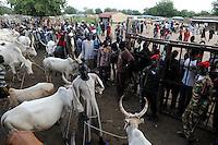 SOUTH SUDAN  Bahr al Ghazal region , Lakes State, town Rumbek, cattle market and auction of cebu cow /  SUED-SUDAN  Bahr el Ghazal region , Lakes State, Rumbek , Viehmarkt, Auktion und Handel mit Zeburindern
