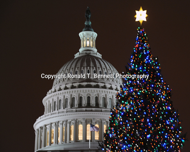 A brisk winter snowy evening with the United States Capitol and 2010 Christmas tree, snowy winter night at the United States Capitol.