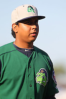 Beloit Snappers catcher Jairo Rodriguez #27 prior to a game against the Kane County Cougars at Fifth Third Bank Ballpark on June 26, 2012 in Geneva, Illinois. Beloit defeated Kane County 8-0. (Brace Hemmelgarn/Four Seam Images)