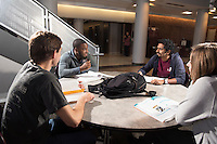A group of friends study in the atrium of McCool Hall at Mississippi State University. The group consists of, from left to right, Steven Weirich, a senior economics major from Olive Branch; Jarrell Colston, a biomedical engineering graduate student from Shaw; alumnus Sanchit Salunkhe from India; and Frances Crawford, a senior English major from Oxford. <br />  (photo by Beth Wynn / &copy; Mississippi State University)