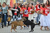 SÃO LUIZ DO PARAITINGA, SP, 19 DE MAIO DE 2013 - FESTA DO DIVINO 2013 - Apresentação de grupos de Congada, Moçambique e de dança de fitas durante Festa do Divino de São Luiz do Paraitinga, realizada entre os dias 10 e 19 de maio de 2013. FOTO: LEVI BIANCO - BRAZIL PHOTO PRESS