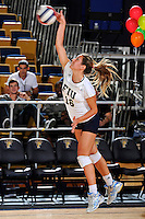 13 November 2010:  FIU's Jovana Bjelica (16) serves in the second set as the FIU Golden Panthers defeated the South Alabama Jaguars, 3-0 (25-12, 25-12, 25-20), at U.S Century Bank Arena in Miami, Florida.