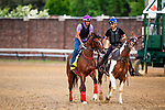 LOUISVILLE, KENTUCKY - MAY 01: Bodeexpress prepares for the Kentucky Oaks  at Churchill Downs in Louisville, Kentucky on May 01, 2019. Evers/Eclipse Sportswire/CSM