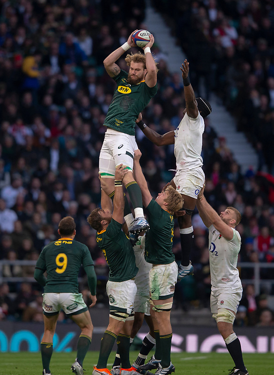 South Africa's RG Snyman claims the lineout<br /> <br /> Photographer Bob Bradford/CameraSport<br /> <br /> Quilter Internationals - England v South Africa - Saturday 3rd November 2018 - Twickenham Stadium - London<br /> <br /> World Copyright © 2018 CameraSport. All rights reserved. 43 Linden Ave. Countesthorpe. Leicester. England. LE8 5PG - Tel: +44 (0) 116 277 4147 - admin@camerasport.com - www.camerasport.com