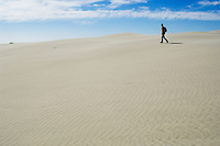 single person walking on sand dunes of Farewell Spit, New  Zealand
