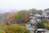 63895-15704 Camel Rock in fall Garden of the Gods Shawnee National Forest Saline Co IL