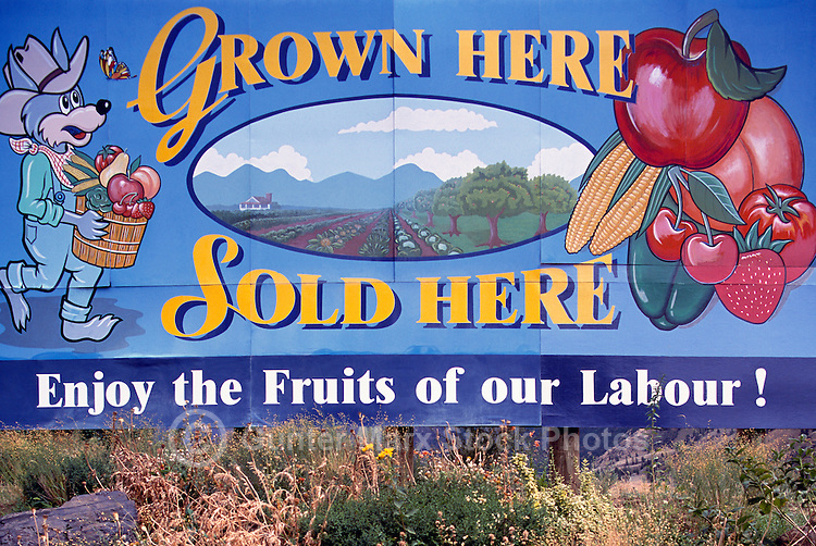 Fresh Fruit and Local Produce for sale Sign, South Okanagan Valley, BC, British Columbia, Canada