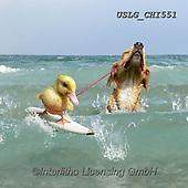 CHIARA,REALISTIC ANIMALS, REALISTISCHE TIERE, ANIMALES REALISTICOS, paintings+++++,USLGCHI551,#A#, EVERYDAY ,photos