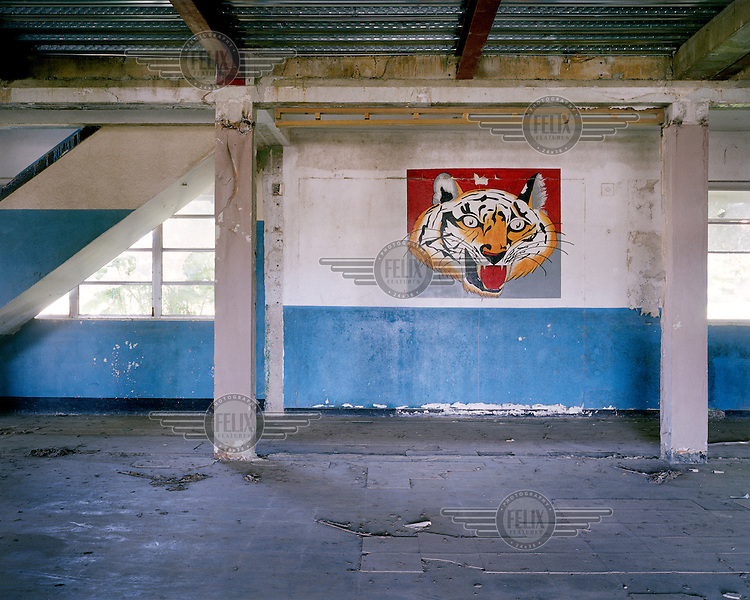A mural of a tiger on a wall at an old, disused barracks hut in the former US army base of Fort Davis. Initially known as Camp Gatun, Fort William D Davis was constructed in 1920 as an infantry post to protect the nearby Gatun Locks and other critical Atlantic side facilities of the Panama Canal.  <br /> <br /> The Panama Canal Zone is an area extending 8kms out, in each direction, from the waterway's central line, was a territory controlled by the United States between 1903 and 1979. After a 20 year period of joint administration, the Canal came under the full control of Panama in 1999. The Canal opened to shipping in 1914 and during its tenure was of great strategic importance to the US, enabling it to rapidly move its naval fleet between the Atlantic and Pacific Oceans. However, its economic value came not directly from shipping fees but from the stimulus to trade that the waterway created. One hundred years after it opened in 2014 it is due to have its locks upgraded to cater for the super sized container ships of the 21st Century. <br />  <br /> During the era of American administration thousands of US citizens populated the Canal Zone, living and working under US law in towns built to American standards. Not all of these people returned north after the canal came under full Panamanian control many stayed on, their identities tied to the region.