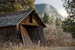 Washington, Chewelah. A rustic weathered shed surrounded by frosted vegetation and rising mist.