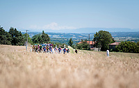 peloton rolling along with the mighty Alps as a backdrop<br /> <br /> Stage 5: Boën-sur-Lignon to Voiron (201km)<br /> 71st Critérium du Dauphiné 2019 (2.UWT)<br /> <br /> ©kramon