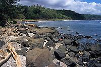Rock on the beach, Tanna Island, Vanuatu.