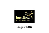 Interflora - August 2018