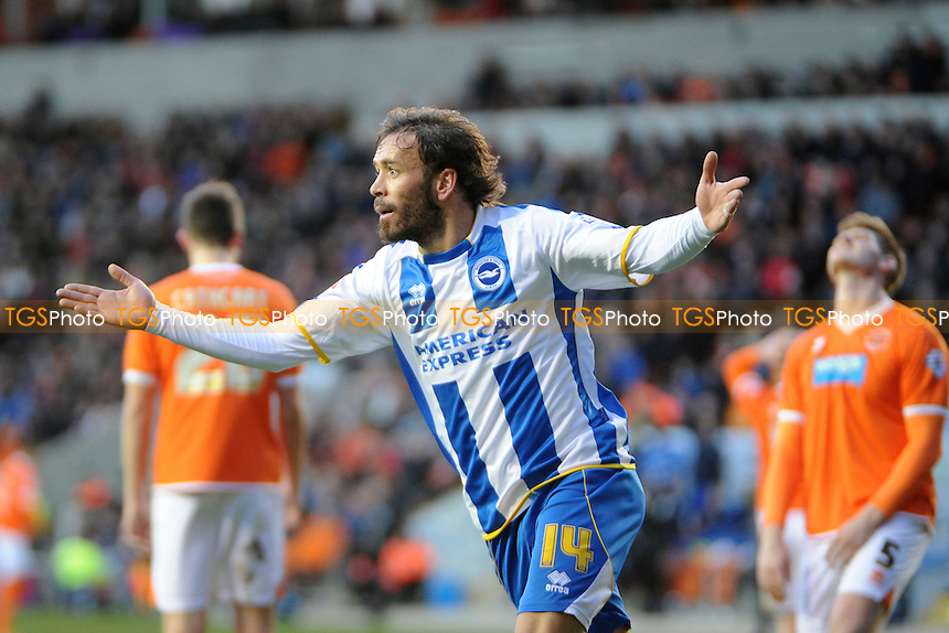 Inigo Calderon of Brighton and Hove Albion celebrates scoring the opener - Blackpool vs Brighton & Hove Albion - Sky Bet Championship Football at Bloomfield Road, Blackpool, Lancashire - 29/12/13 - MANDATORY CREDIT: Greig Bertram/TGSPHOTO - Self billing applies where appropriate - 0845 094 6026 - contact@tgsphoto.co.uk - NO UNPAID USE