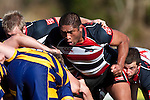 Kojak Faioso shows his determination as he packs down in a scrum. Air New Zealand Cup rugby game between Counties Manukau Steelers & Bay of Plenty played at Bayer Growers Stadium, Pukekohe on Sunday August 9th 2009..Bay of Plenty won 32 - 9.