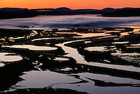 Rapadalen valley, Sarek National park, Laponia World Heritage Site, Lapland, Norrbotten, Sweden