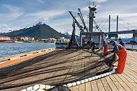 Commercial fishermen check net for needed repairs on dock in Sitka, Alaska.