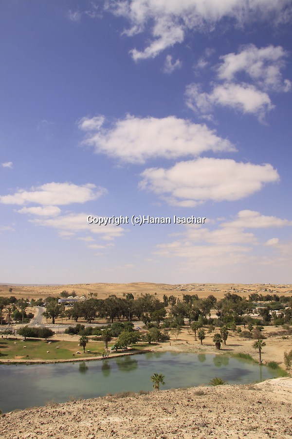 Israel, Negev, Golda Park Near Revivim named after former prime minister Golda Meir.
