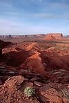 Monument Valley, Utah, Arizona, Four Corners. Southwest, America, U.S.A.,  lone desert plant,.