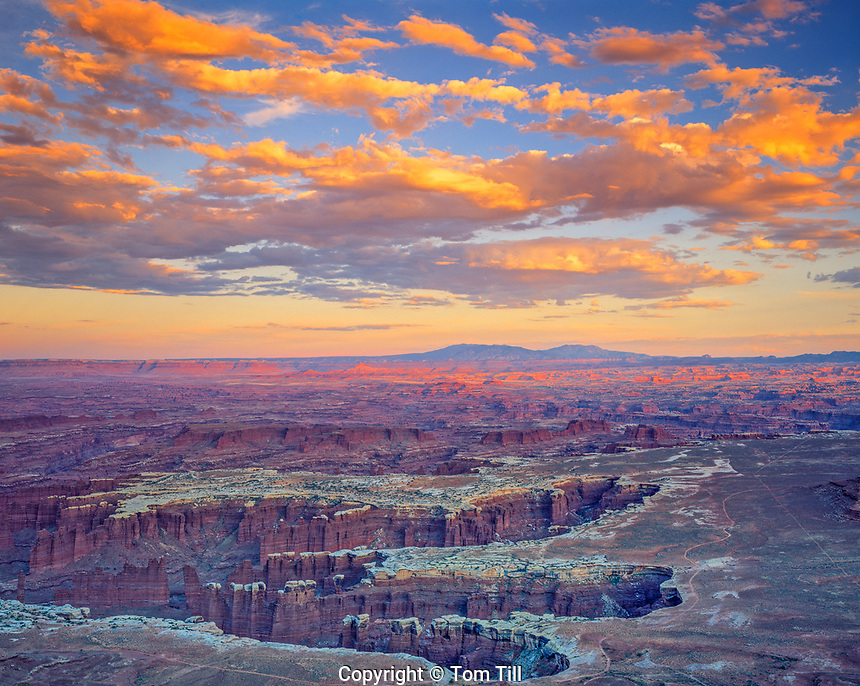 Grandview Point, Canyonlands National Park, Utah Island in the Sky District   Colorado River