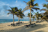 The Riviera Maya, as it has come to be called, is a stunning strip of sandy beaches flanked by a tropical jungle that stretches from Cancun nearly 100 miles south to the town of Tulum.