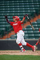 Brayant Henriquez (8) follows through on a swing during the Dominican Prospect League Elite Underclass International Series, powered by Baseball Factory, on July 21, 2018 at Schaumburg Boomers Stadium in Schaumburg, Illinois.  (Mike Janes/Four Seam Images)