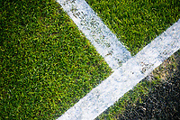 Detail of Grass and lines on pitch <br /> Re: Behind the Scenes Photographs at the Liberty Stadium ahead of and during the Premier League match between Swansea City and Bournemouth at the Liberty Stadium, Swansea, Wales, UK. Saturday 25 November 2017