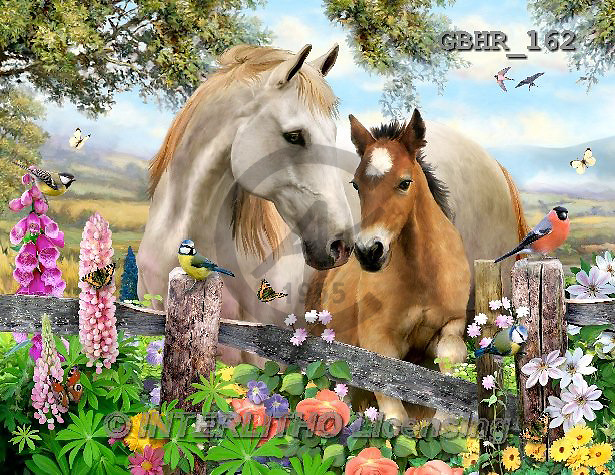 Howard, REALISTIC ANIMALS, REALISTISCHE TIERE, ANIMALES REALISTICOS, paintings+++++Into the light,GBHR162,#A#,horses,foal,countryside ,puzzles