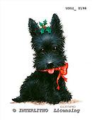 GIORDANO, CHRISTMAS ANIMALS, WEIHNACHTEN TIERE, NAVIDAD ANIMALES, paintings+++++,USGI2198,#XA# dogs,puppies