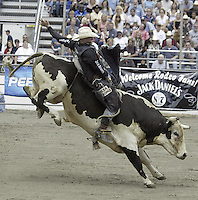 29 Aug 2004: Bull Rider Dustin Elliott ranked number one in the world rides the bull Dozer during the PRCA 2004 Extreme Bulls competition in Bremerton, WA.