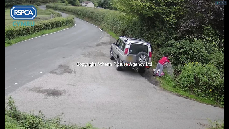PLEASE BYLINE RSPCA CYMRU<br /> Pictured: Gavin Huw is seen throwing away pets rabbits at a layby on Abercynon Road, Rhondda Cynon Taf, Wales, UK.<br /> Re: A man has been jailed and banned from keeping animals for 10 years after he was caught on CCTV throwing two rabbits into a grass verge before driving off.<br /> Gavin Huw Towells, 39, from Cwmbach, Aberdare, appeared at Merthyr Magistrates' Court and pleaded guilty to three offences.<br /> He was also prosecuted by Rhondda Cynon Taf council for fly-tpping, after leaving a rabbit hutch at the location.<br /> The court heard that Towells was caught on privately-owned CCTV getting out of his car in a layby on Abercynon Road, and getting out a small rabbit hutch from his boot.<br /> He then opened the hutch and picked up the rabbit by the ear, launching it into the undergrowth.<br /> He did the same with a second rabbit, before driving off and leaving the rabbit hutch behind.