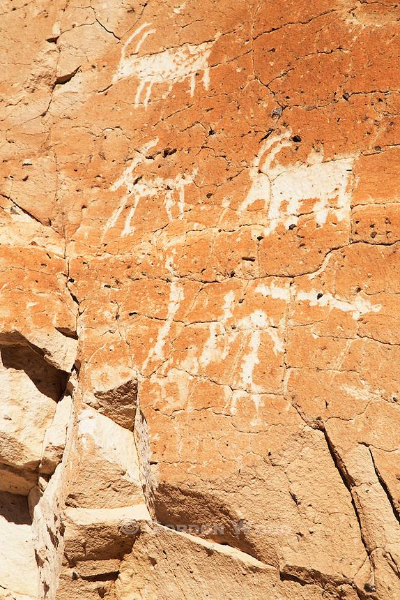 Petroglyphs along Emigrant Canyon Road