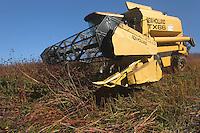 Agriculture - Recolte de sarrasin