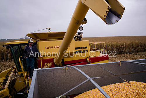 Wataga, Illinois<br /> October 13, 2014<br /> <br /> Harvesting GMO grain in central Illinois on the O&quot;Connor farm