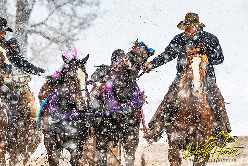 Cutter Races, Afton Wyoming