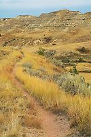 A trail winds through the grasslands and buttes at Theodore Roosevelt National Park in western North Dakota